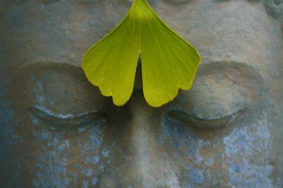 Yoga-Herbst-Start